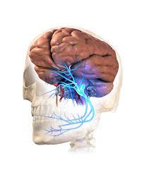 TIC DOULOUREUX –  TRIGEMINAL NEURALGIA